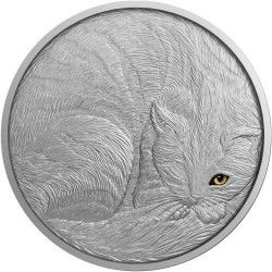6370 Niue 5 $ 2016 Prata 999 (62gr) O gato - Primeira moeda da nova série Animais domésticos